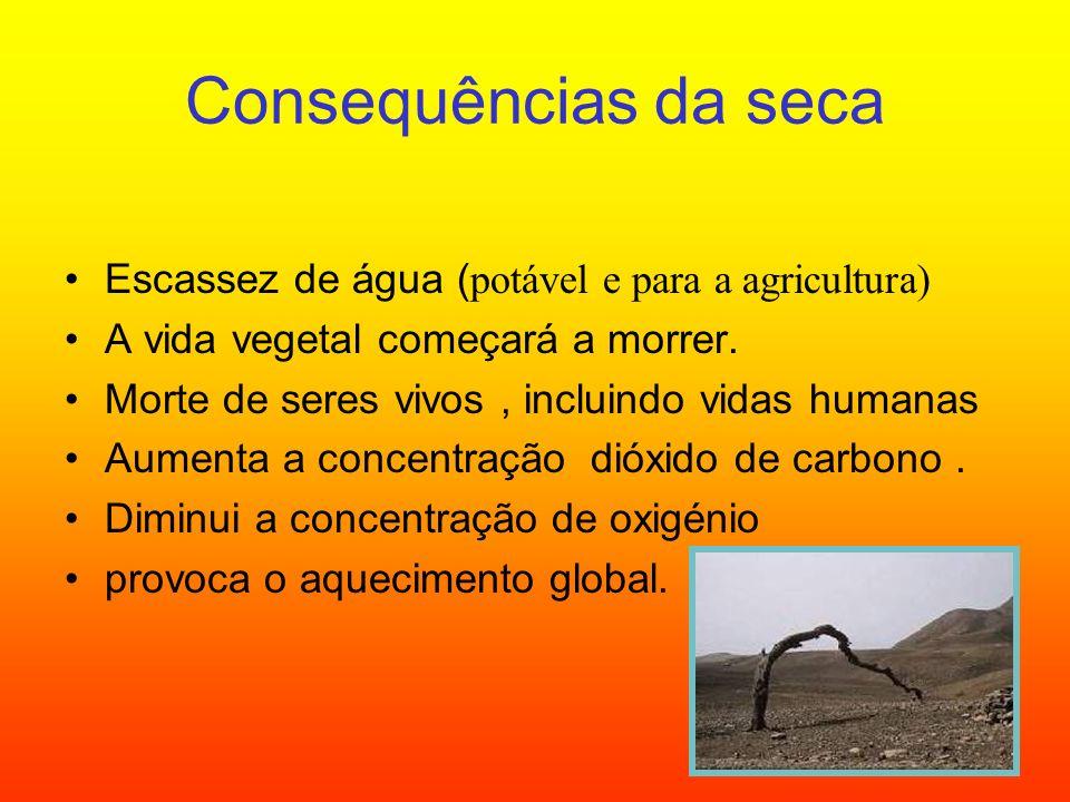 Consequências da seca Escassez de água (potável e para a agricultura)