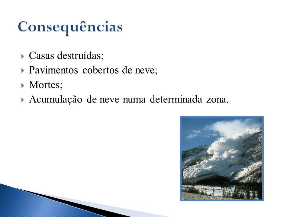 Consequências Casas destruídas; Pavimentos cobertos de neve; Mortes;