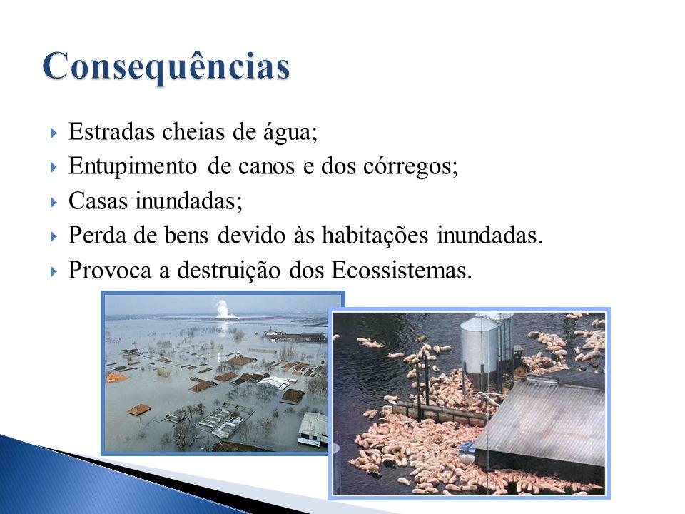 Consequências Estradas cheias de água;