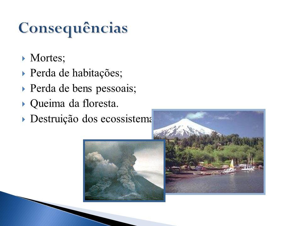 Consequências Mortes; Perda de habitações; Perda de bens pessoais;
