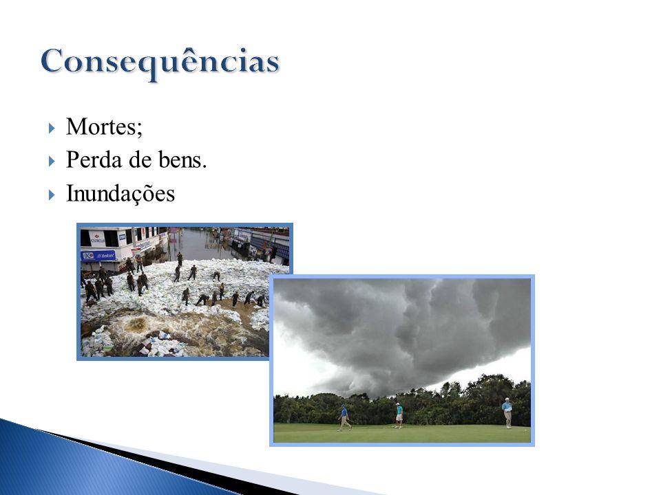 Consequências Mortes; Perda de bens. Inundações