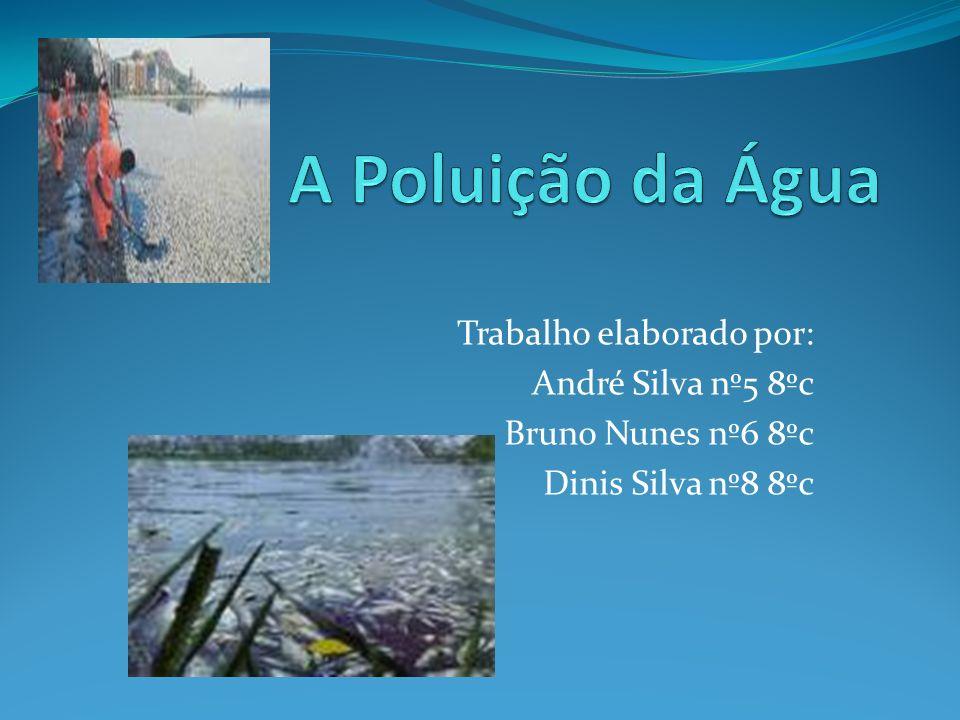 A Poluição da Água Trabalho elaborado por: André Silva nº5 8ºc