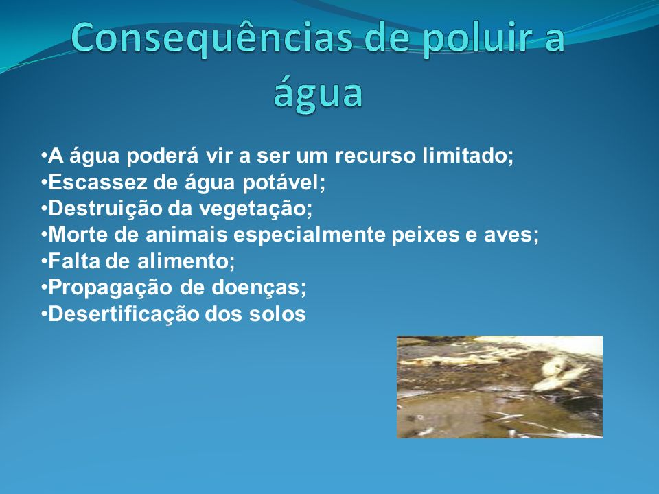 Consequências de poluir a água