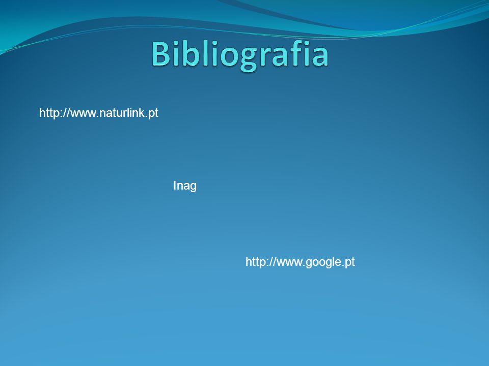 Bibliografia http://www.naturlink.pt Inag http://www.google.pt