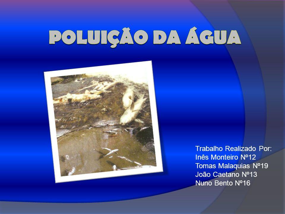 Poluição da Água Trabalho Realizado Por: Inês Monteiro Nº12
