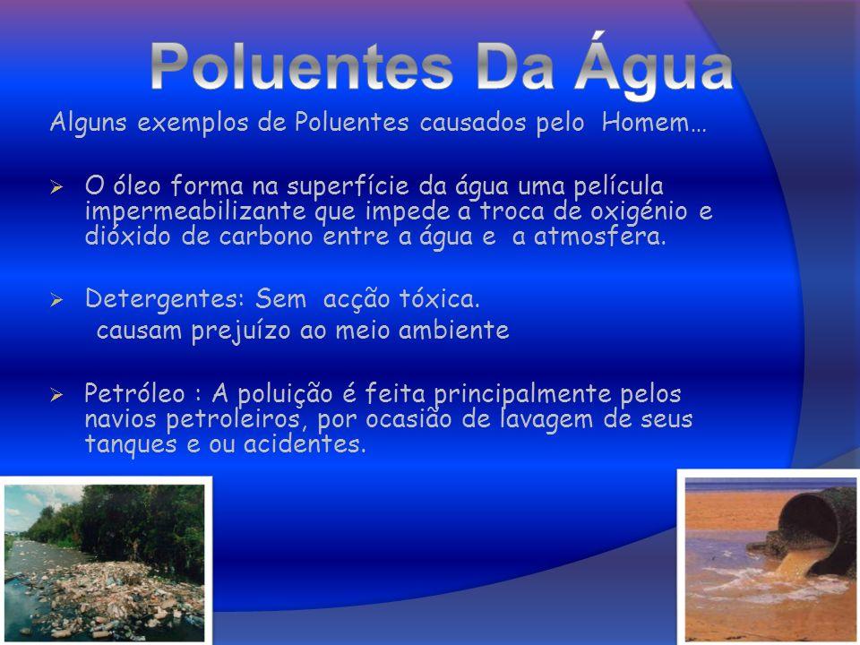 Poluentes Da Água Alguns exemplos de Poluentes causados pelo Homem…