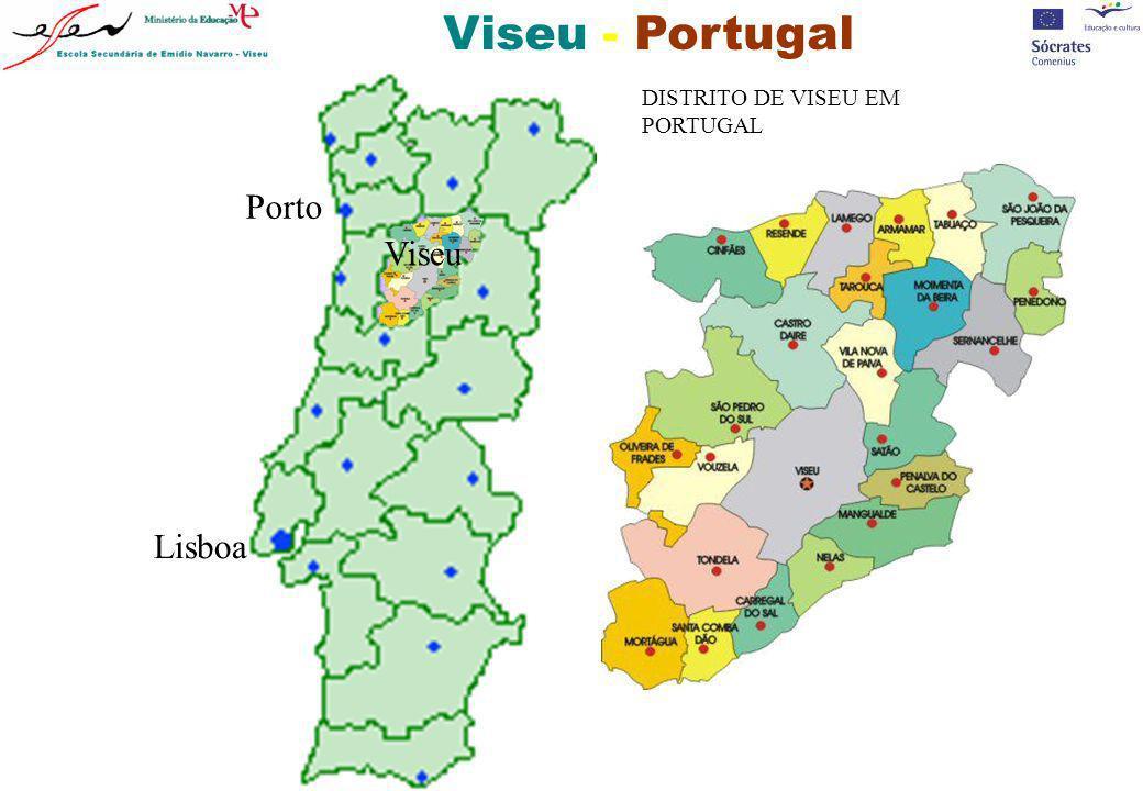 DISTRITO DE VISEU EM PORTUGAL. Porto. Viseu.