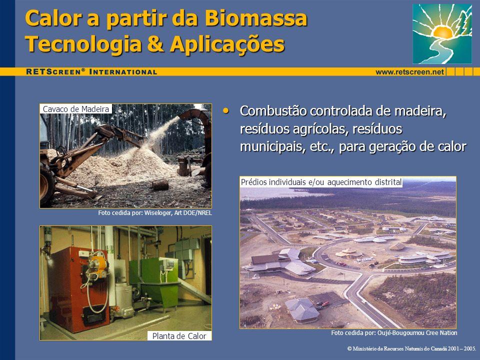 Calor a partir da Biomassa Tecnologia & Aplicações