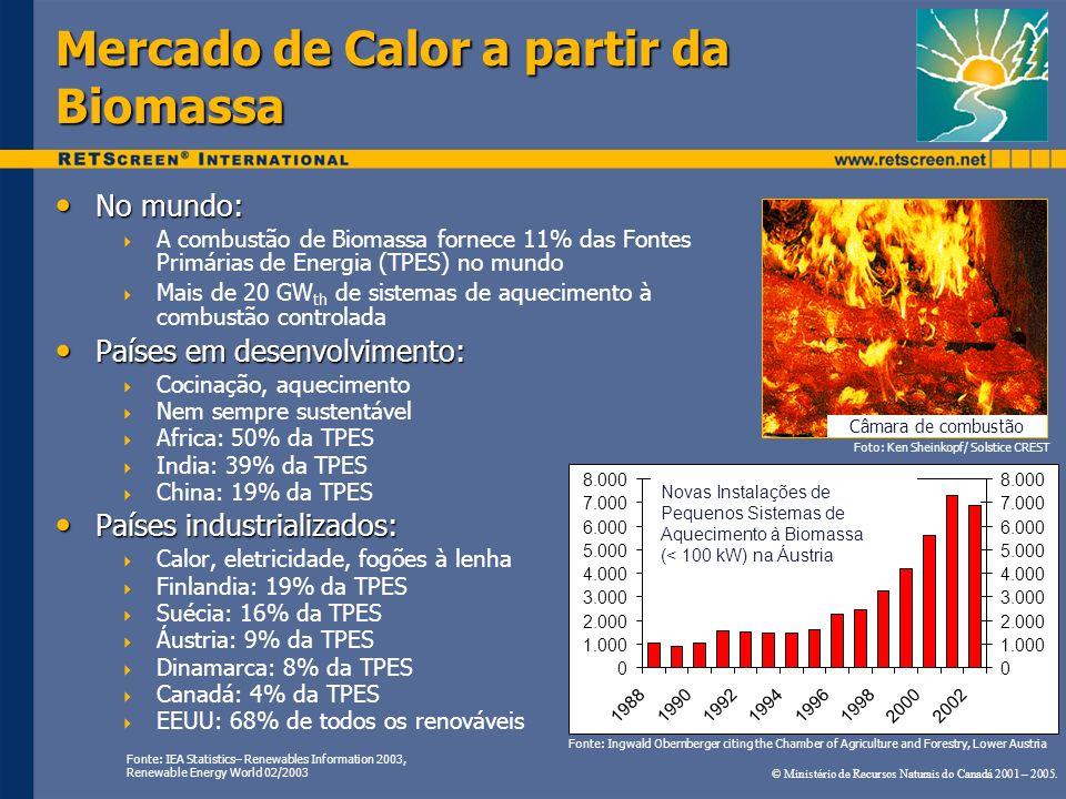 Mercado de Calor a partir da Biomassa