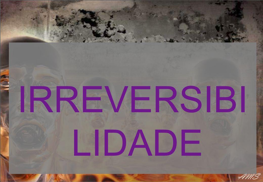 IRREVERSIBILIDADE