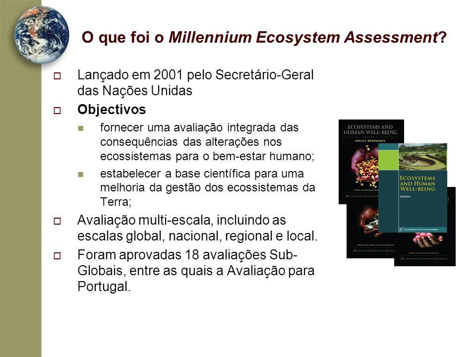 O que foi o Millennium Ecosystem Assessment