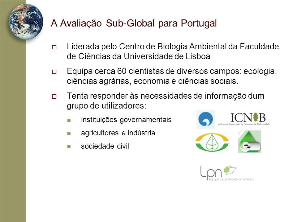 A Avaliação Sub-Global para Portugal