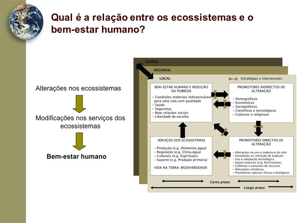 Qual é a relação entre os ecossistemas e o bem-estar humano