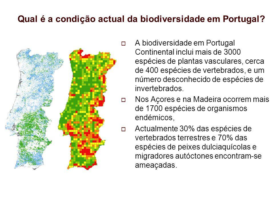 Qual é a condição actual da biodiversidade em Portugal