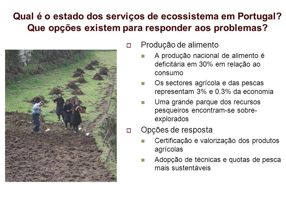 Qual é o estado dos serviços de ecossistema em Portugal