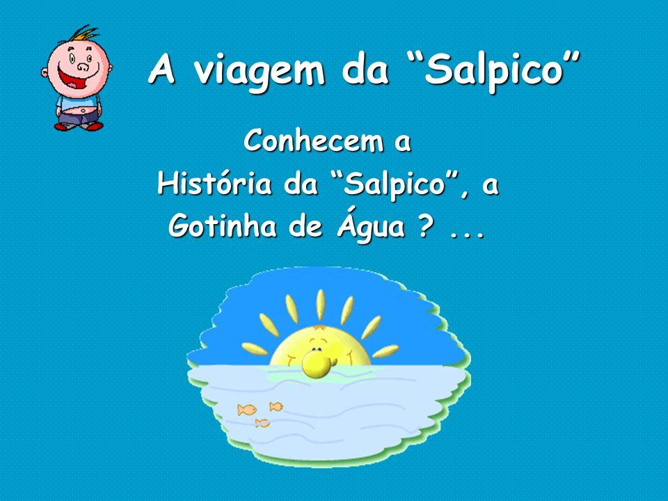 História da Salpico , a