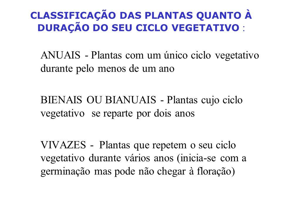 CLASSIFICAÇÃO DAS PLANTAS QUANTO À DURAÇÃO DO SEU CICLO VEGETATIVO :