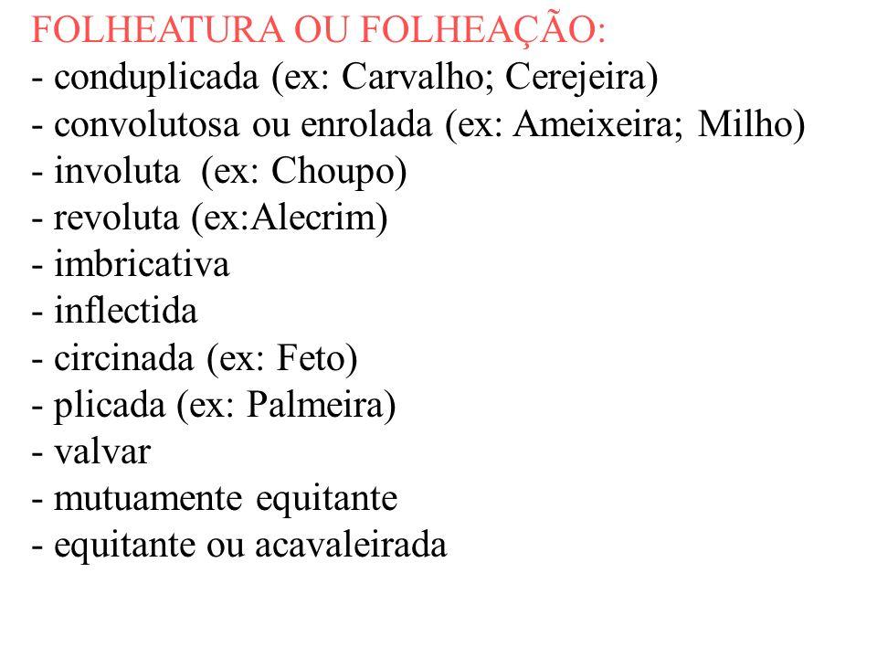 FOLHEATURA OU FOLHEAÇÃO: