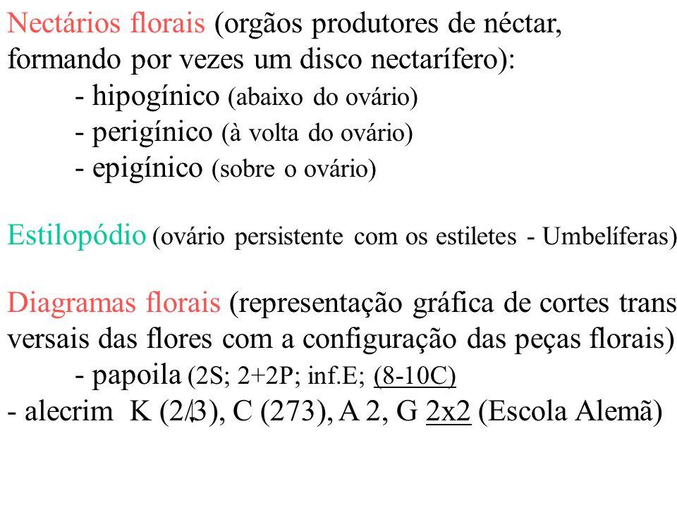 Nectários florais (orgãos produtores de néctar,