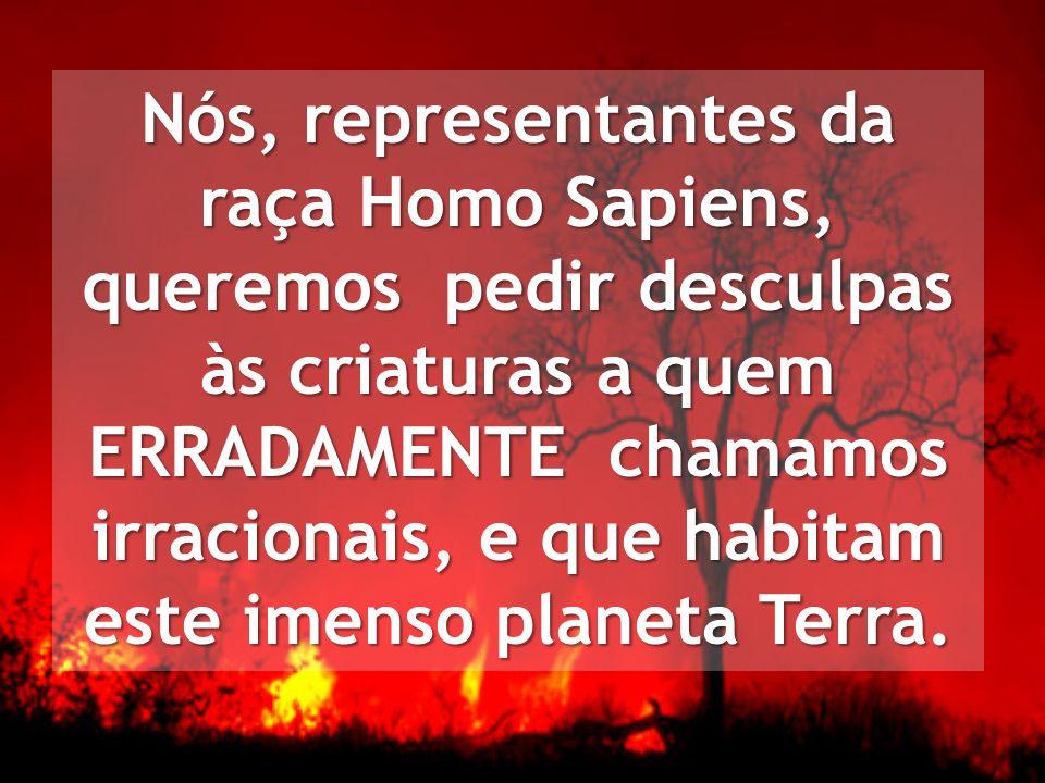 Nós, representantes da raça Homo Sapiens, queremos pedir desculpas às criaturas a quem ERRADAMENTE chamamos irracionais, e que habitam este imenso planeta Terra.