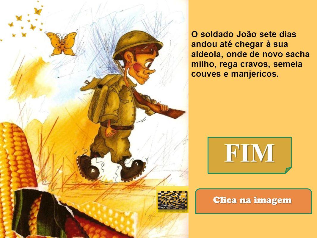 O soldado João sete dias andou até chegar à sua aldeola, onde de novo sacha milho, rega cravos, semeia couves e manjericos.