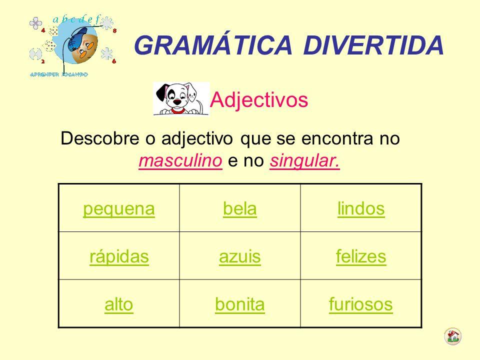 Descobre o adjectivo que se encontra no masculino e no singular.