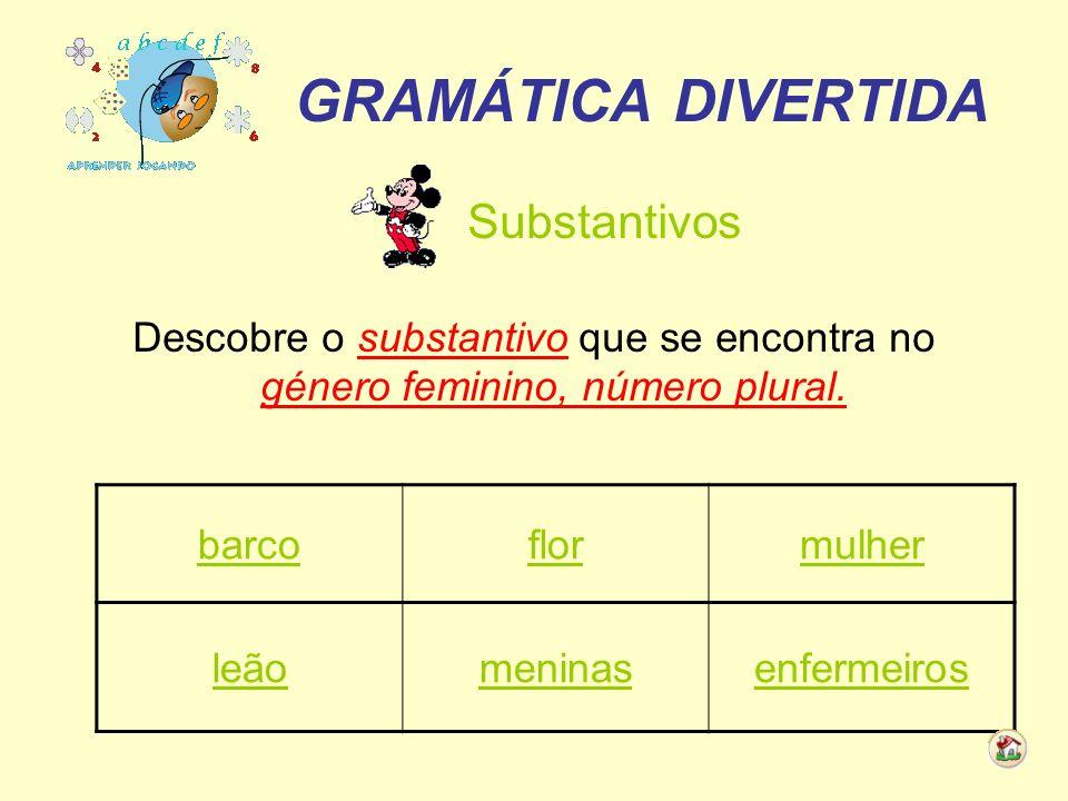 GRAMÁTICA DIVERTIDA Substantivos