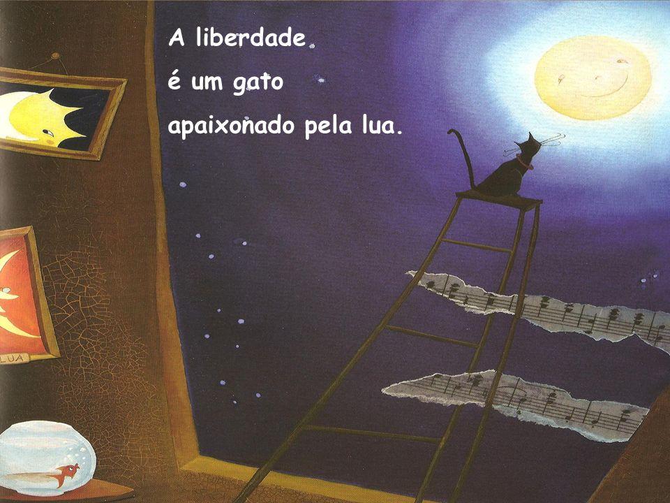 A liberdade é um gato apaixonado pela lua.