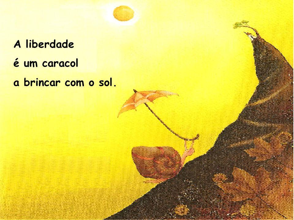 A liberdade é um caracol a brincar com o sol.
