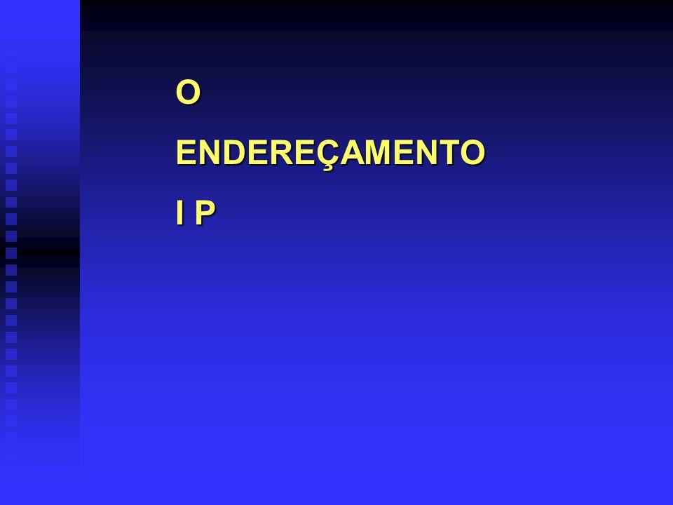 O ENDEREÇAMENTO I P