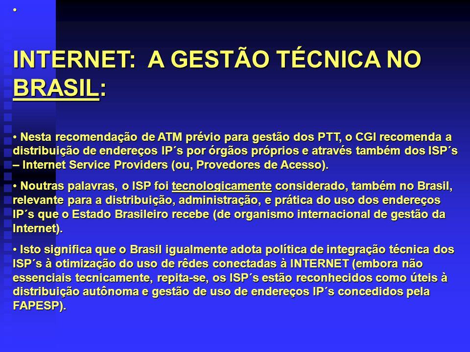 INTERNET: A GESTÃO TÉCNICA NO BRASIL: