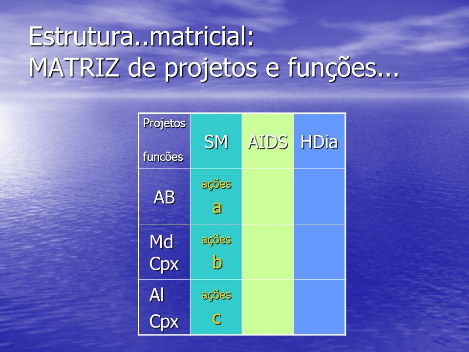Estrutura..matricial: MATRIZ de projetos e funções...