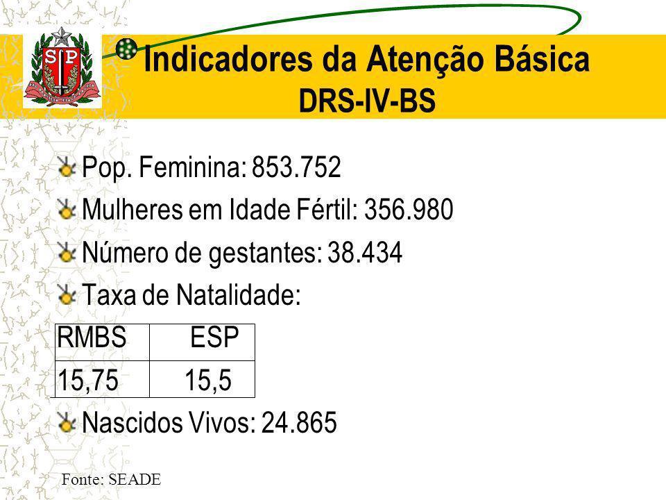 Indicadores da Atenção Básica DRS-IV-BS
