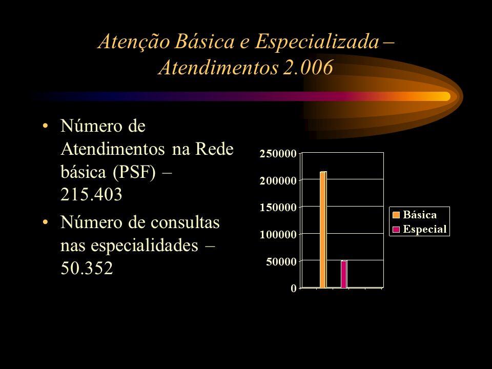 Atenção Básica e Especializada – Atendimentos 2.006