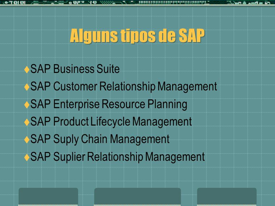 Alguns tipos de SAP SAP Business Suite