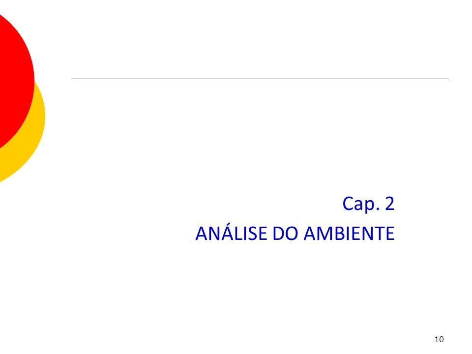 Cap. 2 ANÁLISE DO AMBIENTE