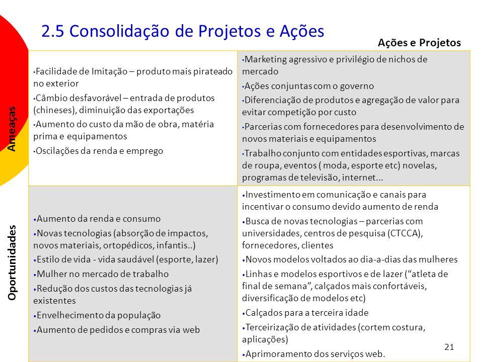 2.5 Consolidação de Projetos e Ações