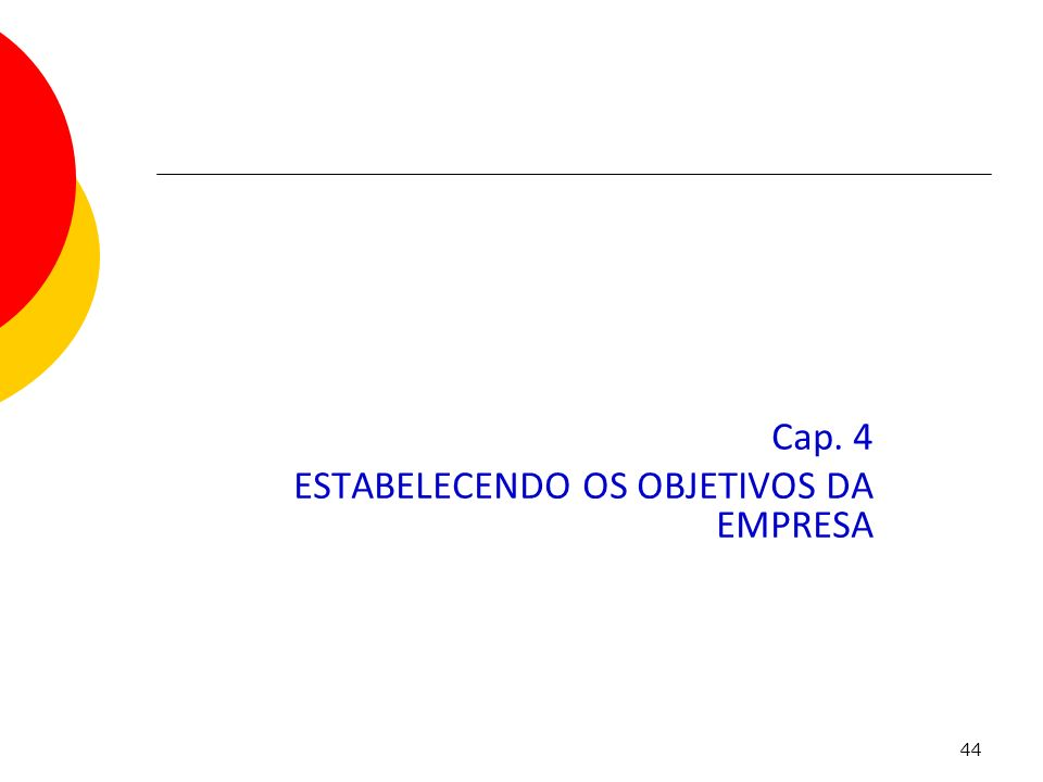 Cap. 4 ESTABELECENDO OS OBJETIVOS DA EMPRESA