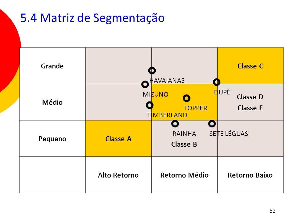 ° ° ° ° ° ° ° 5.4 Matriz de Segmentação Grande Classe C Médio Classe D