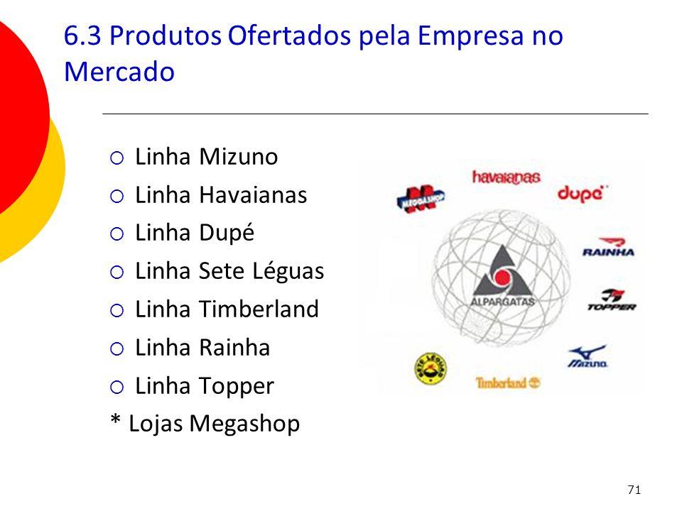 6.3 Produtos Ofertados pela Empresa no Mercado
