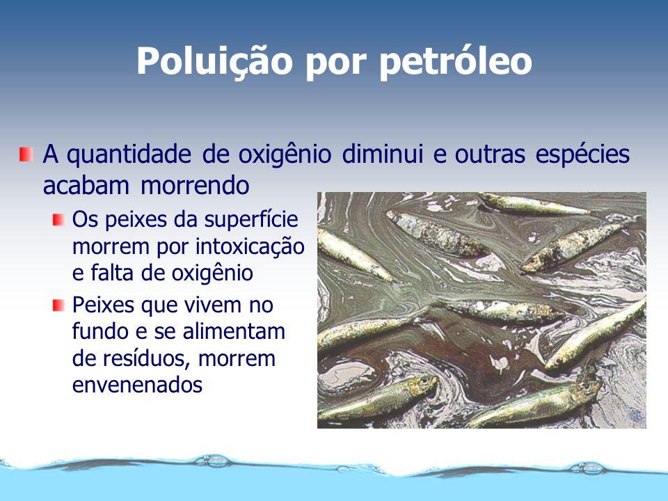 Poluição por petróleo A quantidade de oxigênio diminui e outras espécies acabam morrendo.