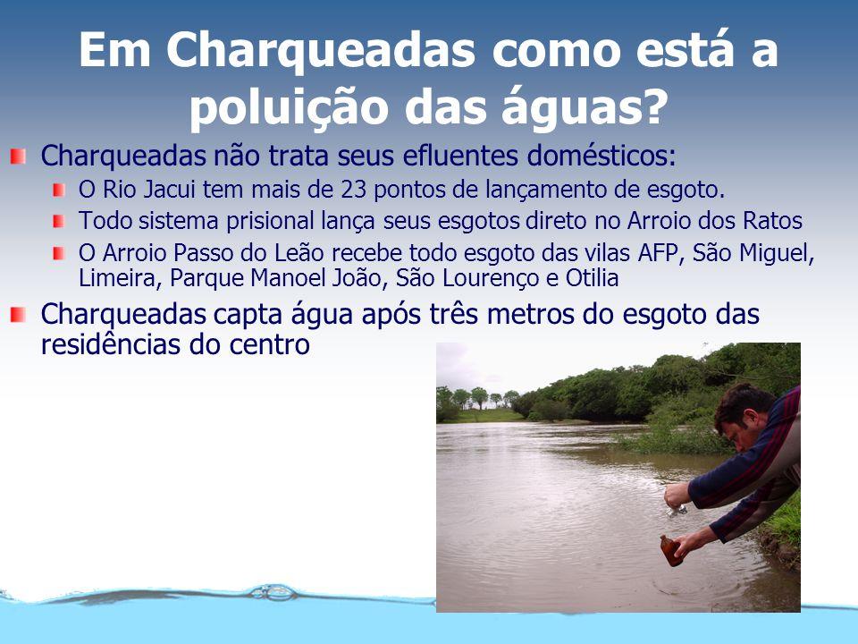 Em Charqueadas como está a poluição das águas