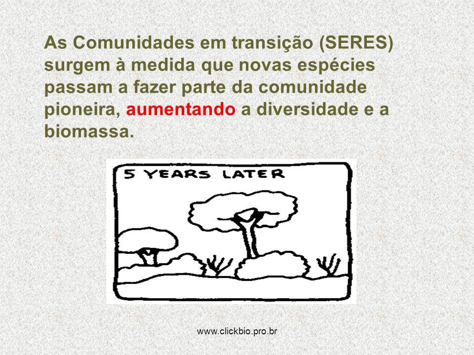 As Comunidades em transição (SERES) surgem à medida que novas espécies passam a fazer parte da comunidade pioneira, aumentando a diversidade e a biomassa.
