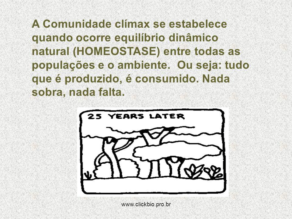 A Comunidade clímax se estabelece quando ocorre equilíbrio dinâmico natural (HOMEOSTASE) entre todas as populações e o ambiente. Ou seja: tudo que é produzido, é consumido. Nada sobra, nada falta.