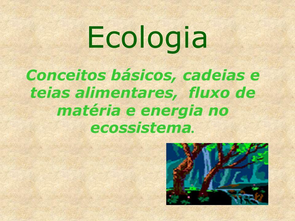Ecologia Conceitos básicos, cadeias e teias alimentares, fluxo de matéria e energia no ecossistema.