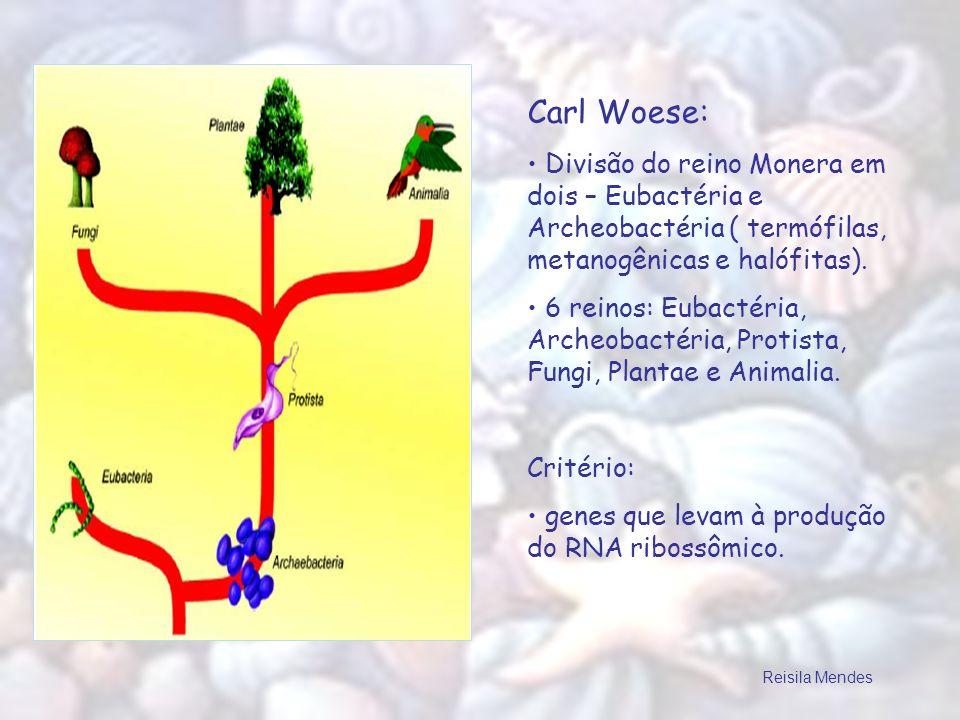 Carl Woese: Divisão do reino Monera em dois – Eubactéria e Archeobactéria ( termófilas, metanogênicas e halófitas).