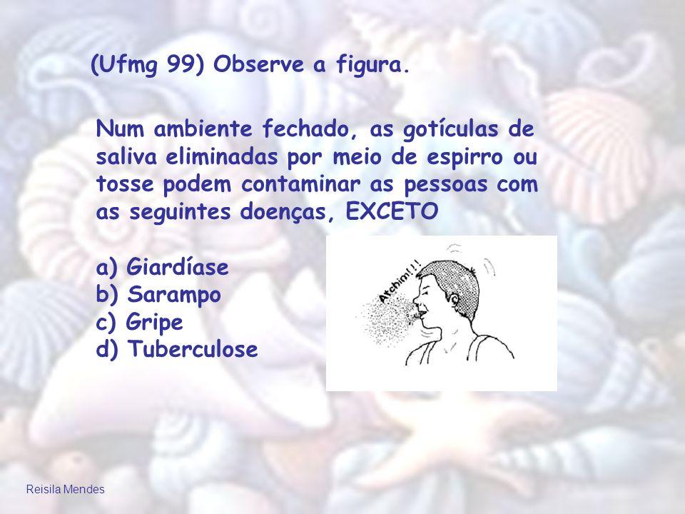 (Ufmg 99) Observe a figura.