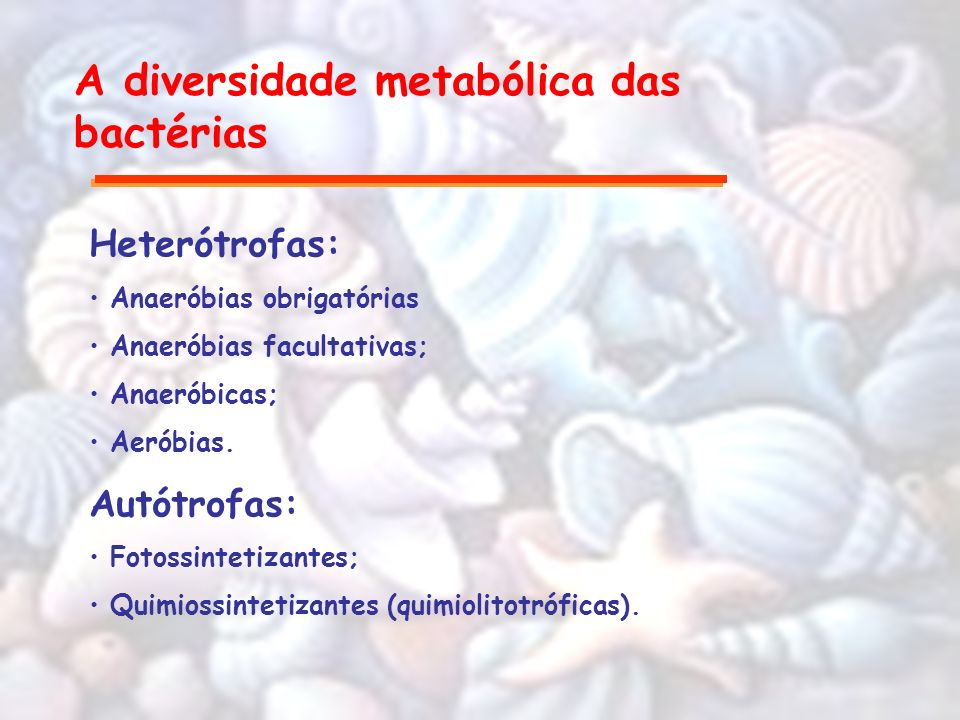 A diversidade metabólica das bactérias