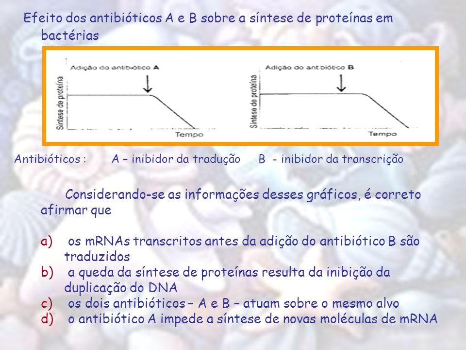Efeito dos antibióticos A e B sobre a síntese de proteínas em bactérias