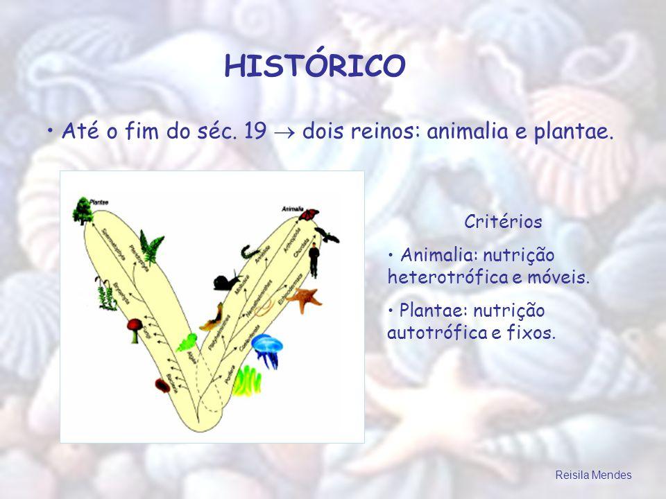 HISTÓRICO Até o fim do séc. 19  dois reinos: animalia e plantae.